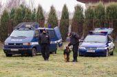 Pokaz tresury policyjnych czworonogów